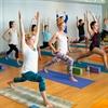 All Levels Flow Yoga